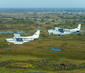 Flug Safaris