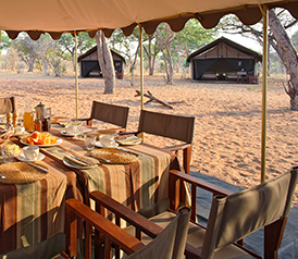 Mobile Camping Safaris